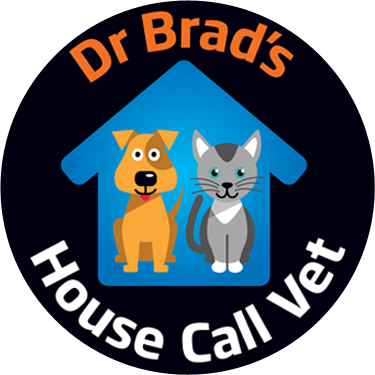 Melbourne House Call Vet for Cats and Dogs